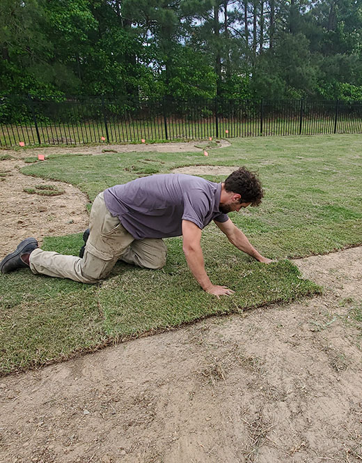Peak Sodding Installation Experts
