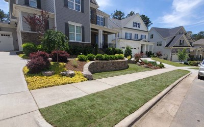Sodding vs Seeding in North Carolina — Which is Better?