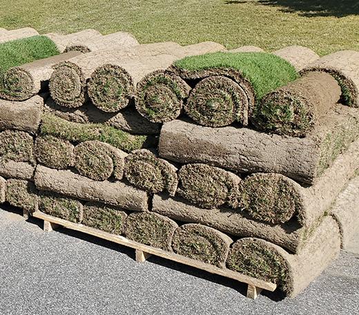 Sod Rolls for Sod Installation